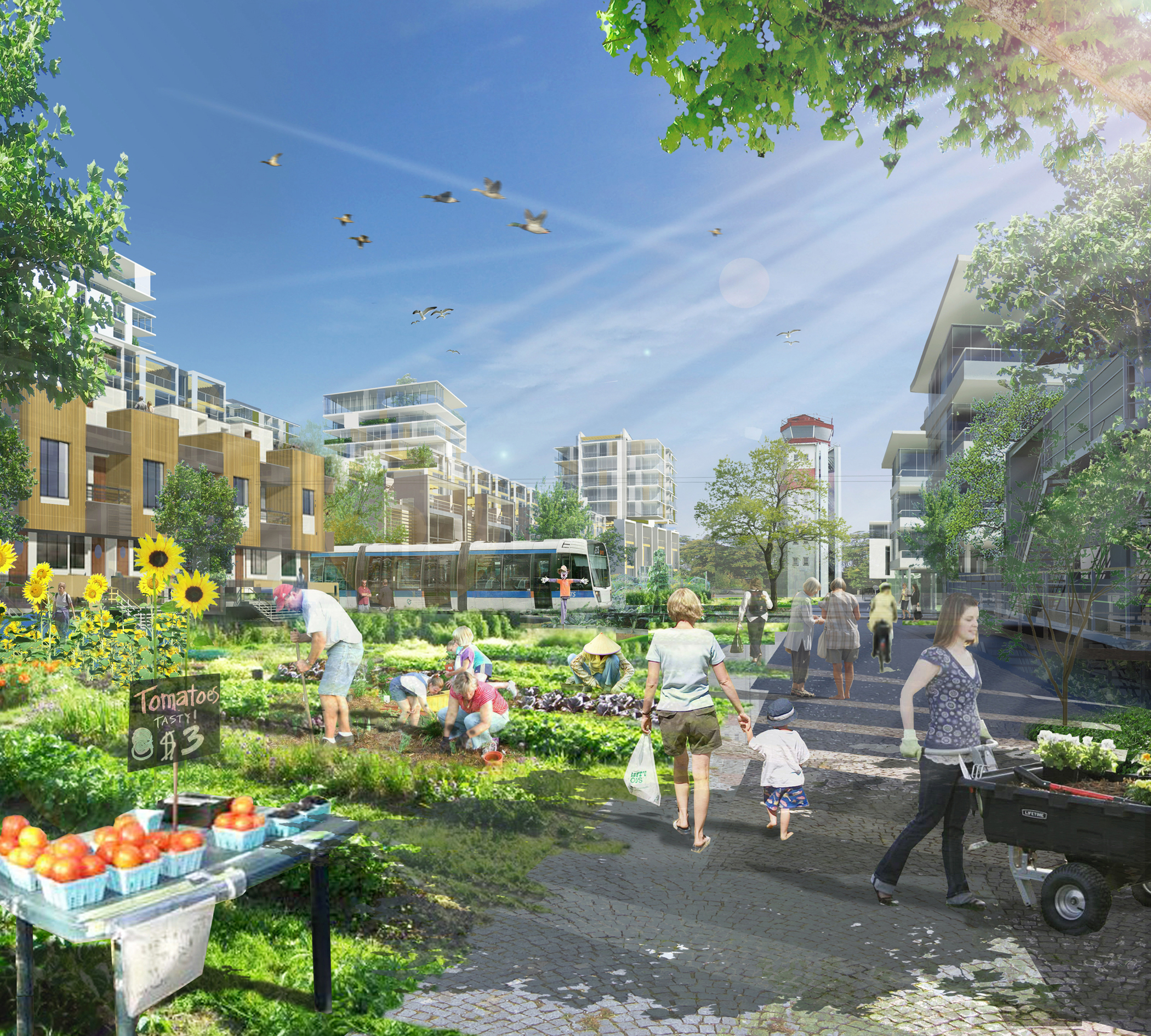 Blatchford building the neighbourhood of the future - Sustainable urban planning and design ...